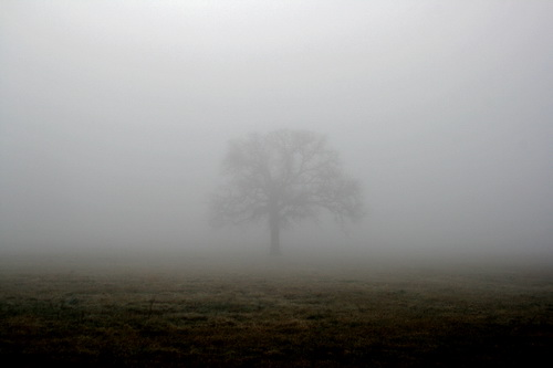 DJ Subliminal - Mercury 1 / Sightings
